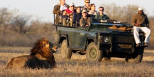 Approval for 240-bed Kruger National Park hotel in South Africa