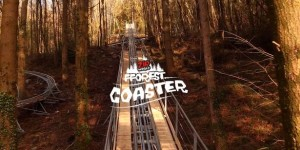 Zipping through the trees on the Fforest Coaster